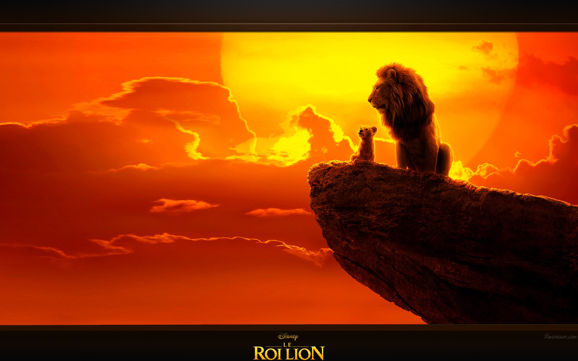 Le Roi Lion Fonds D écran Image Arrière Plan Wallpaper