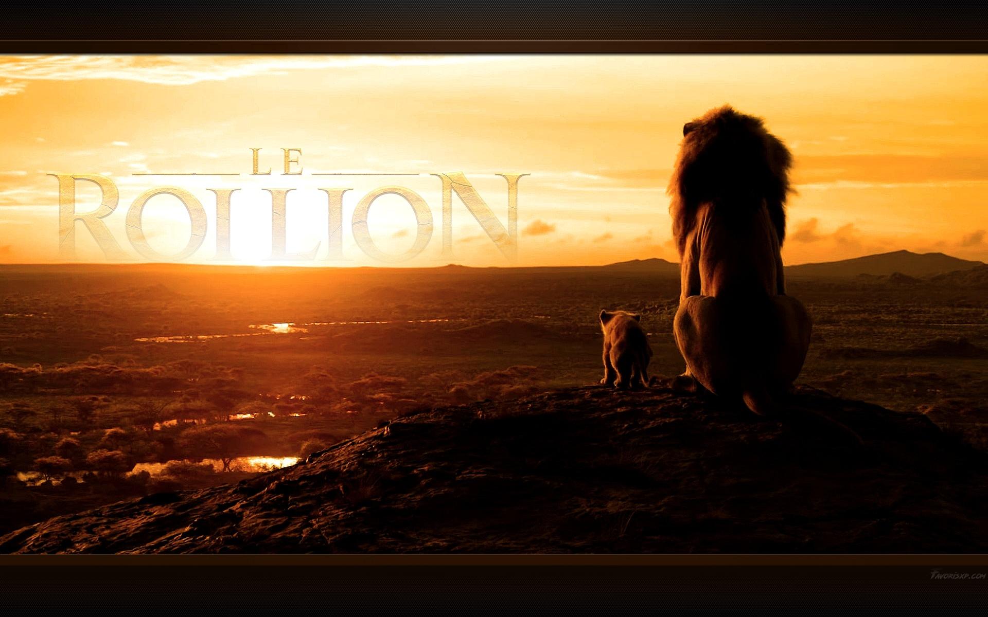 Lion Fond Ecran Designcivique